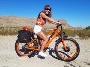 dual motor electric bike