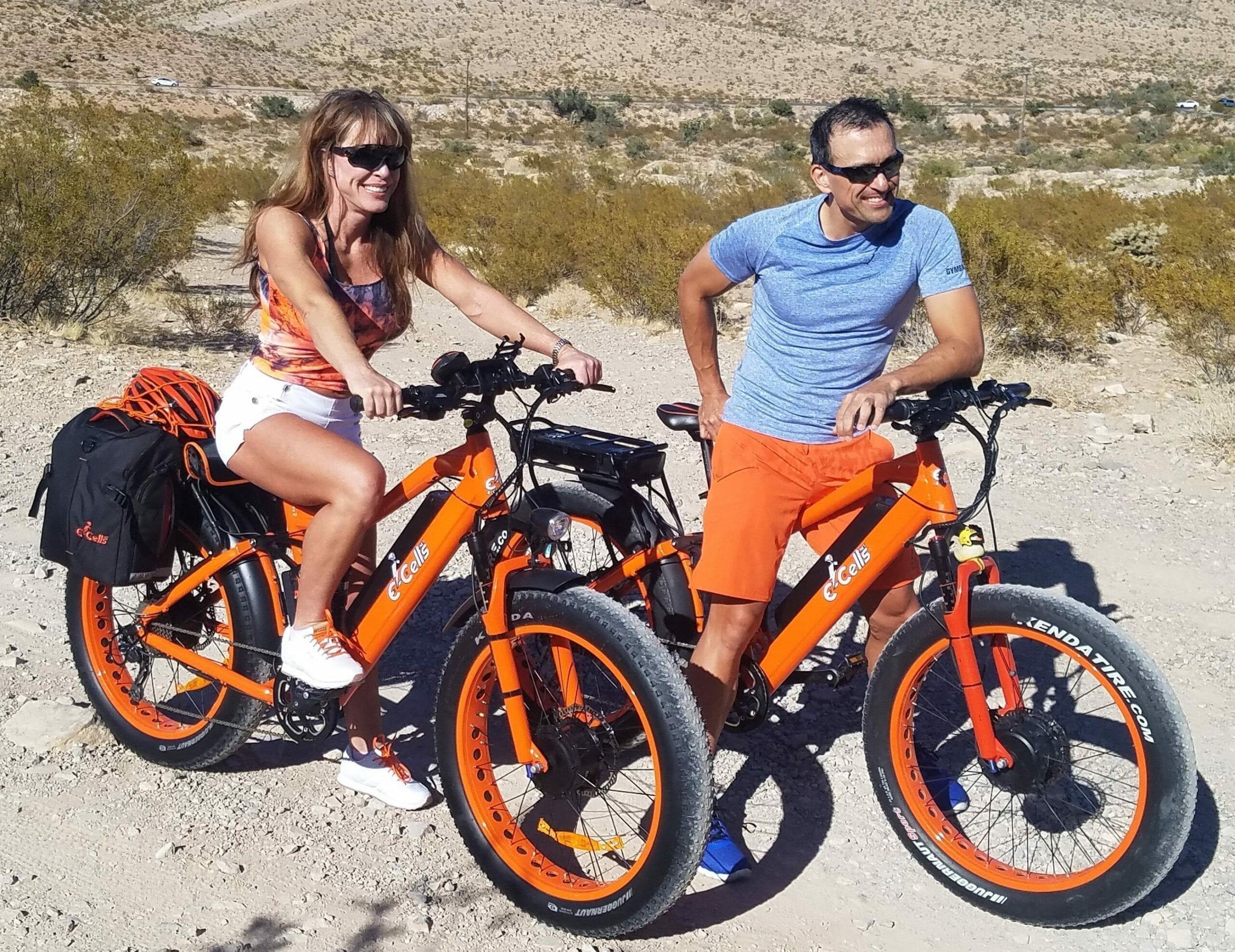 awd electric bikes
